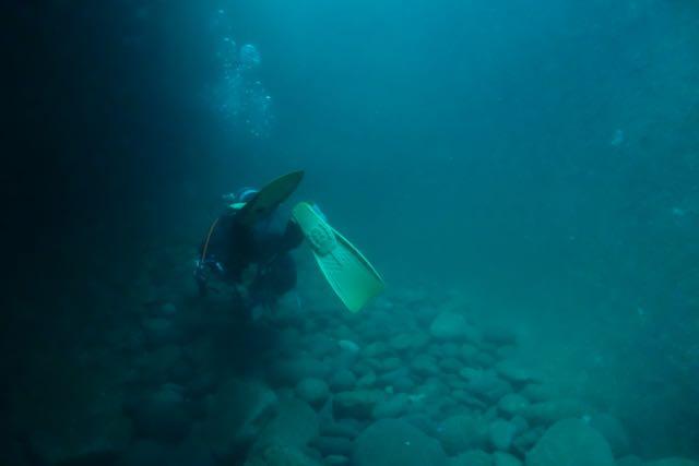 DSC04406水路下の金子