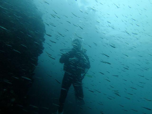 DSCF0218潜降