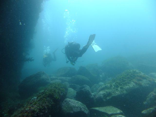 DSCF0475泳ぐダイバー