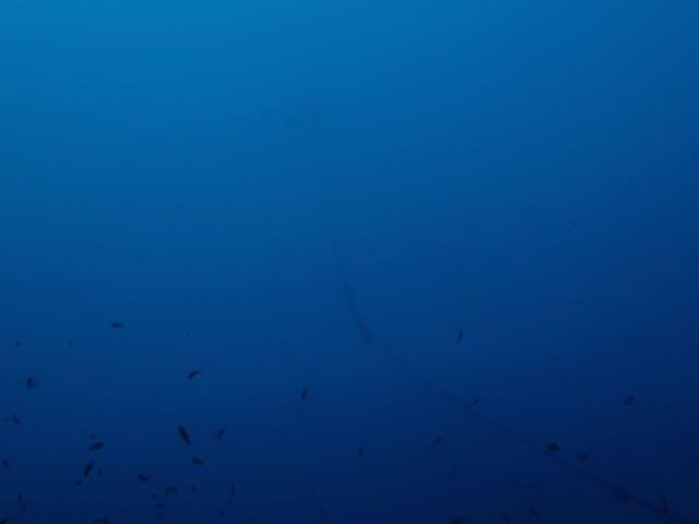DSCF0775水面のブイ