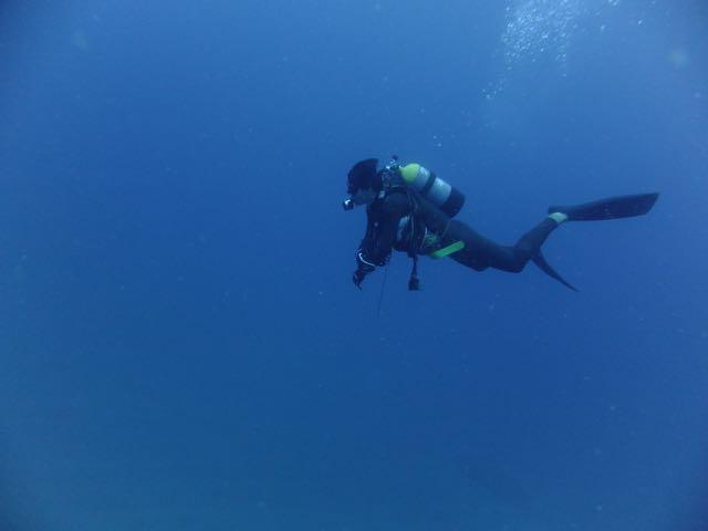 DSCF1068泳ぐダイバー
