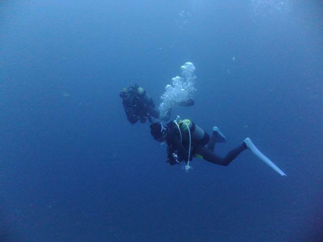 DSCF1114泳ぐダイバー