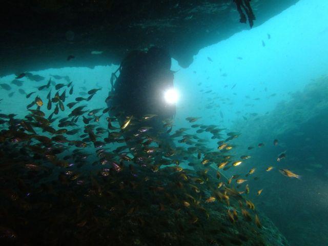 DSCF2972黒崎のトンネル