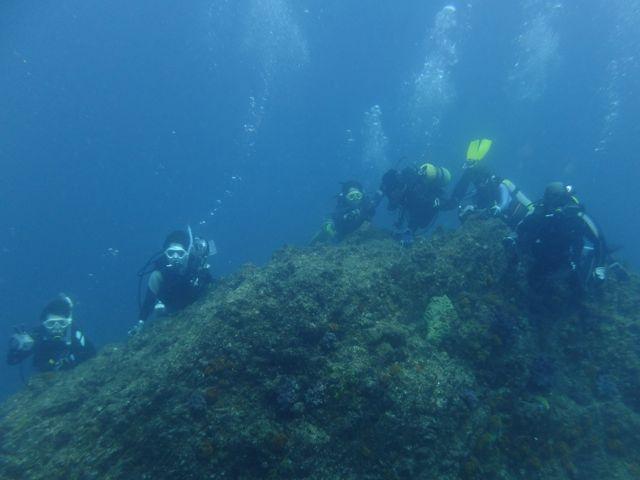 DSCF3154沖の根ダイバー