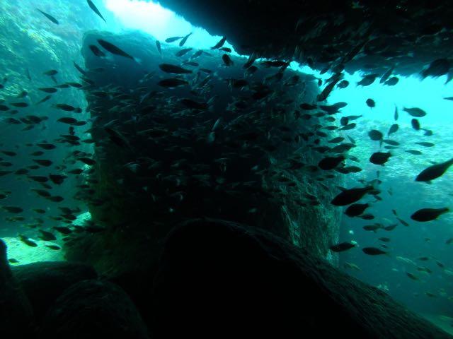 DSCF3938黒崎のトンネル