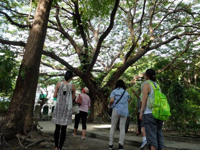 DSCF3952公園