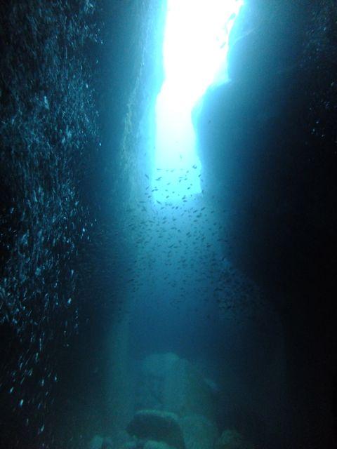 DSCF4534水路下の洞窟