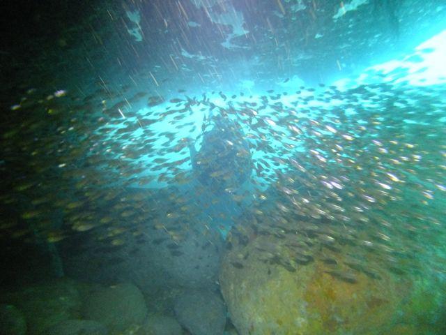 DSCF4989黒崎のトンネル