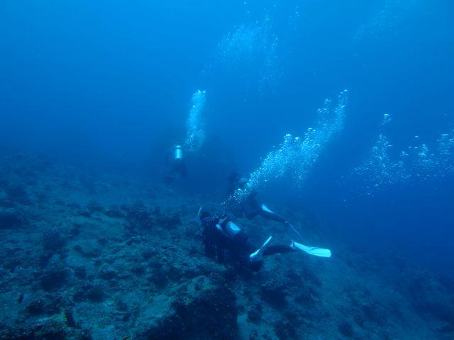 DSCF5319トンバラで泳ぐ