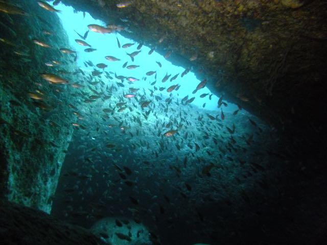 DSCF5614黒崎のトンネル