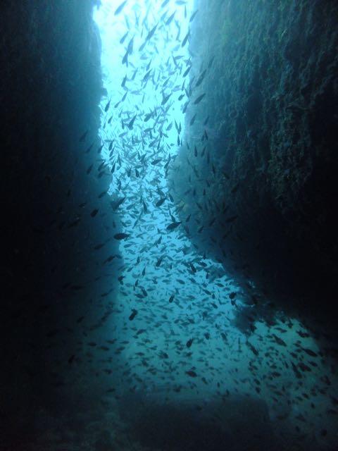 DSCF5828小牛の洞窟出口