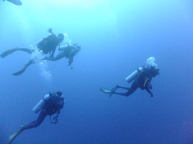 DSCF6177青い海のダイバー