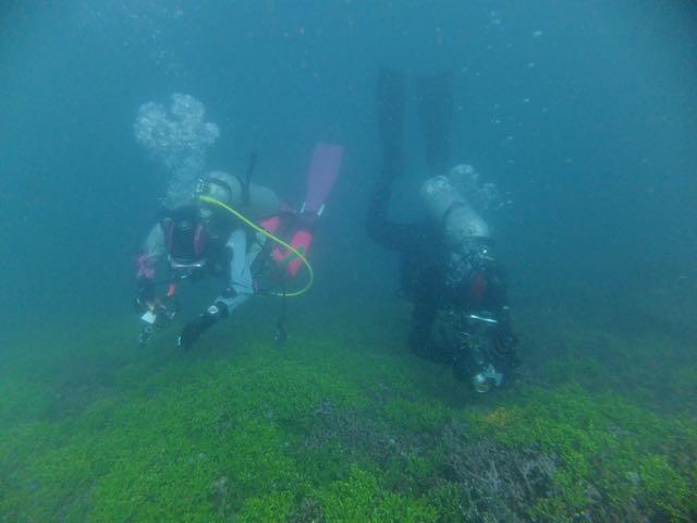 DSCF6587サンゴのふたり