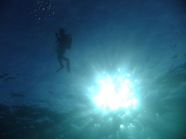 DSCF6770潜降