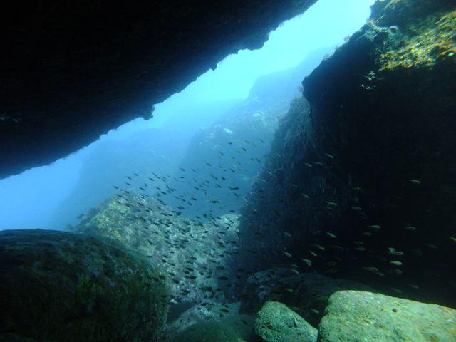 DSCF6802黒崎のトンネル