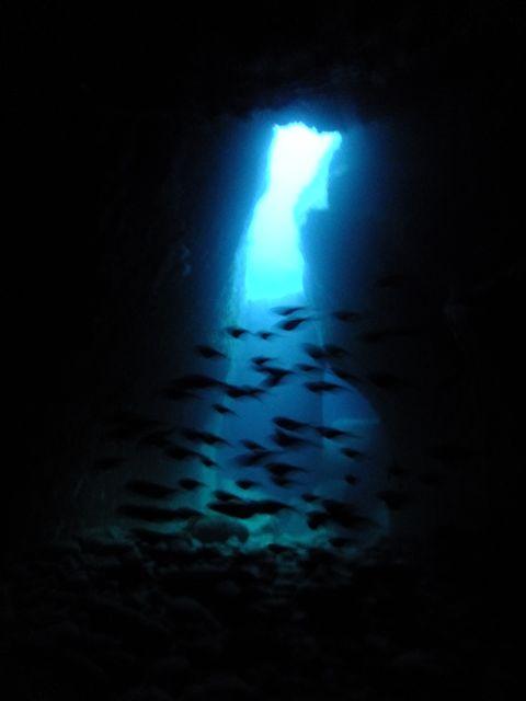 DSCF6852水路下の洞窟