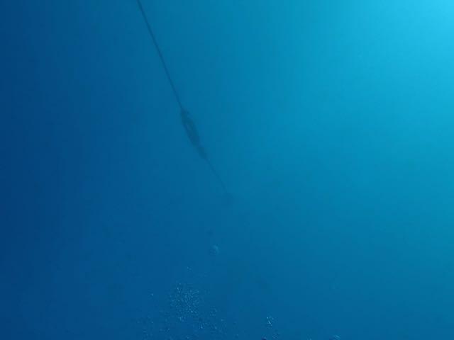 DSCF7278水深18m
