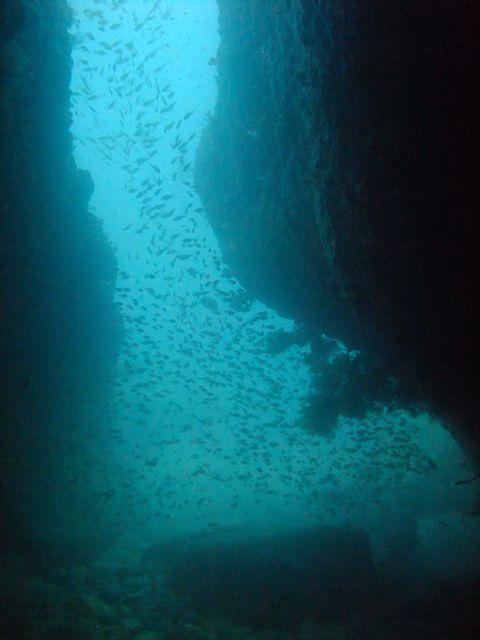 DSCF8547小牛の洞窟出口