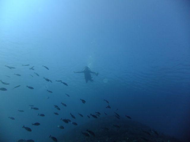 DSCF8729青い海