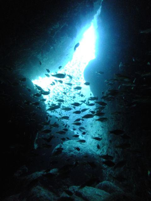 DSCF8776Hの穴