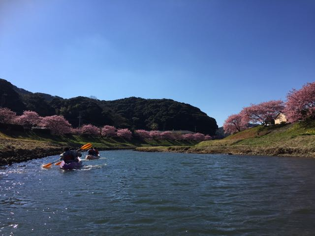 IMG_0035川面からみなみの桜