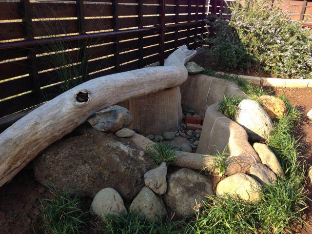 IMG_2385石で囲い龍のヒゲ