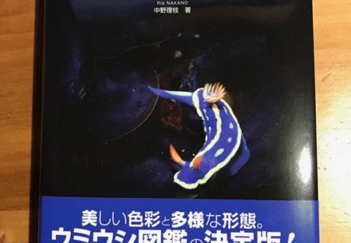 中野理枝さんによるウミウシツアー@雲見、決定!