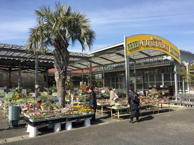 IMG_5565柏木植物園
